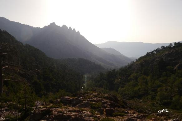 Vallée Muvratu