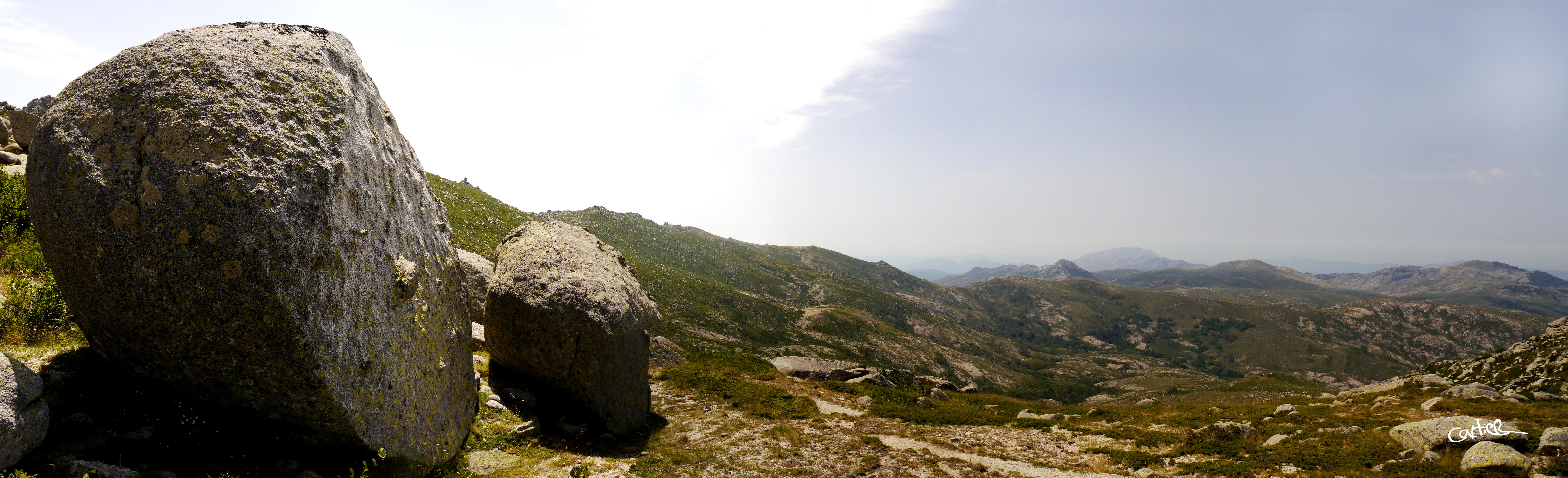 L'alcudine à flanc de rochers